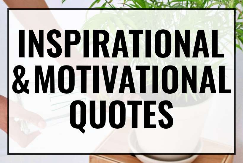 inspirational & motivational quotes